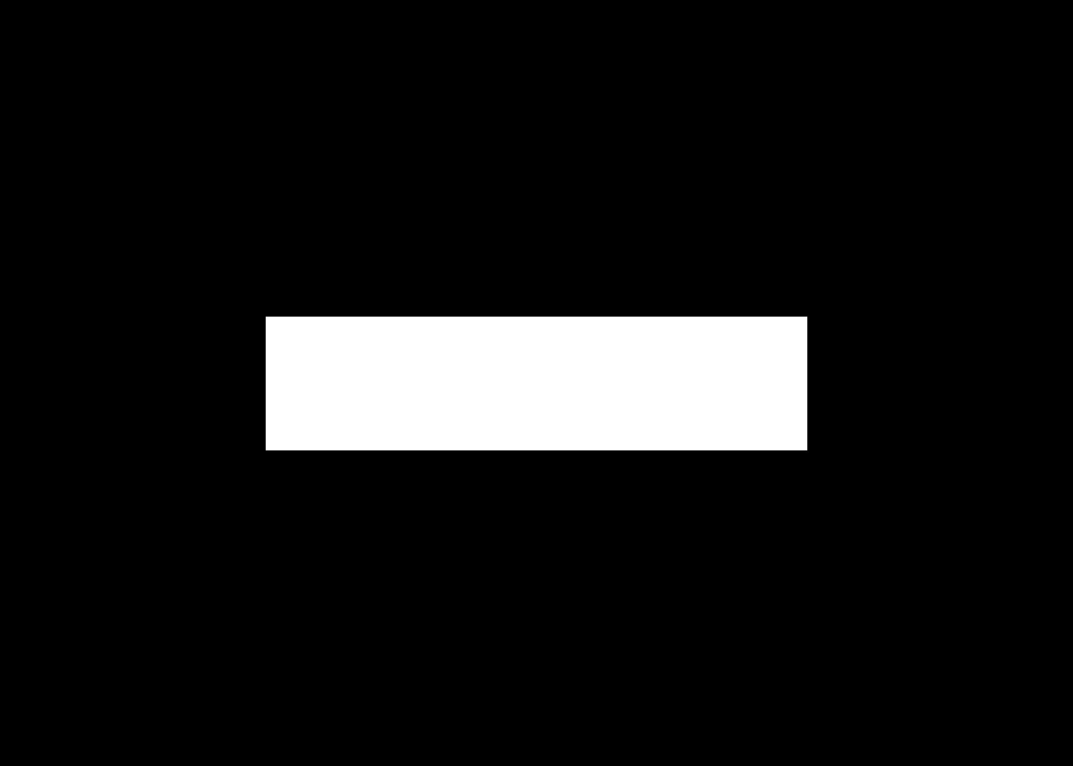 White informatica logo final